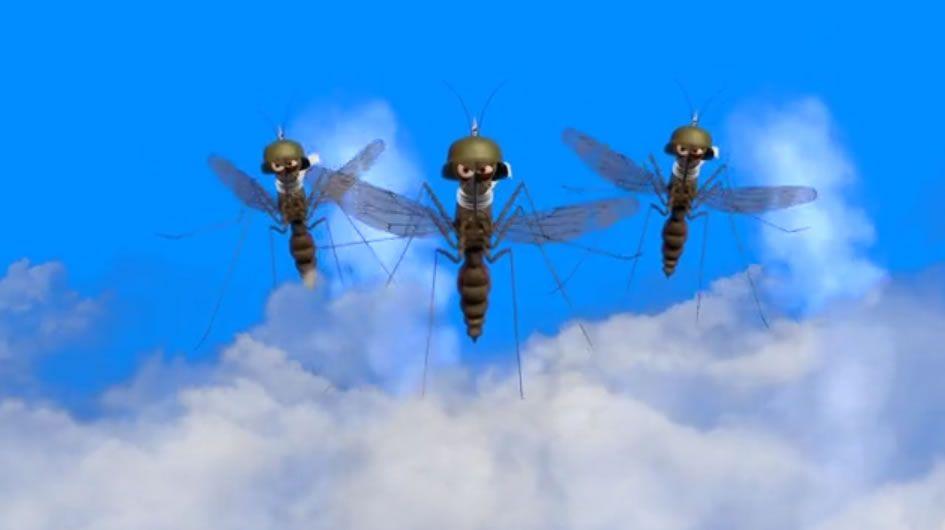 Brasures - Mosquito